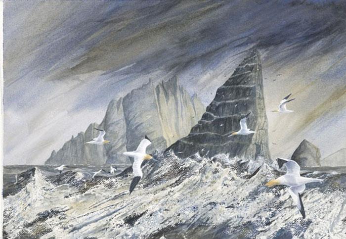 Judith Entwisle-Baker: Westside Gallery